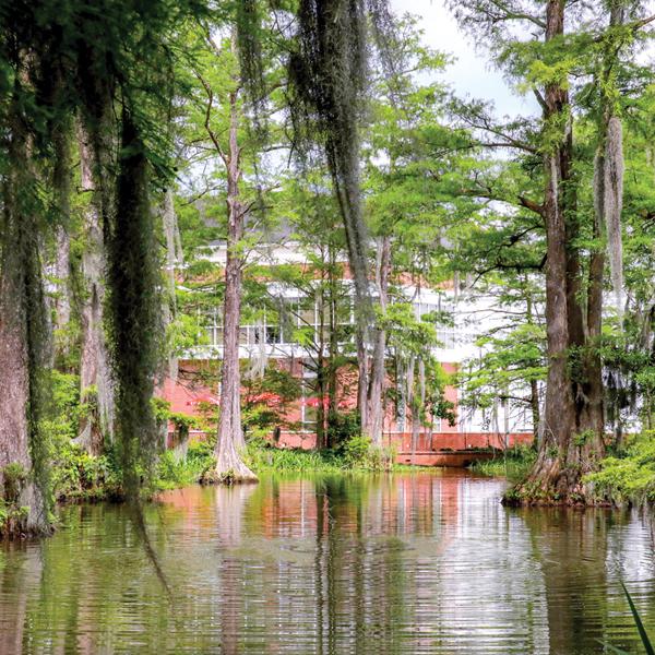 Union Spotlight on the Student Union at University of Louisiana–Lafayette