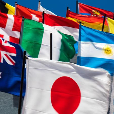 Flag Displays: Signs of Diversity, Nationalism, or Just Good PR?