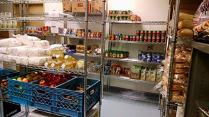 Combating Food Insecurity: The Food Pantry and Beyond